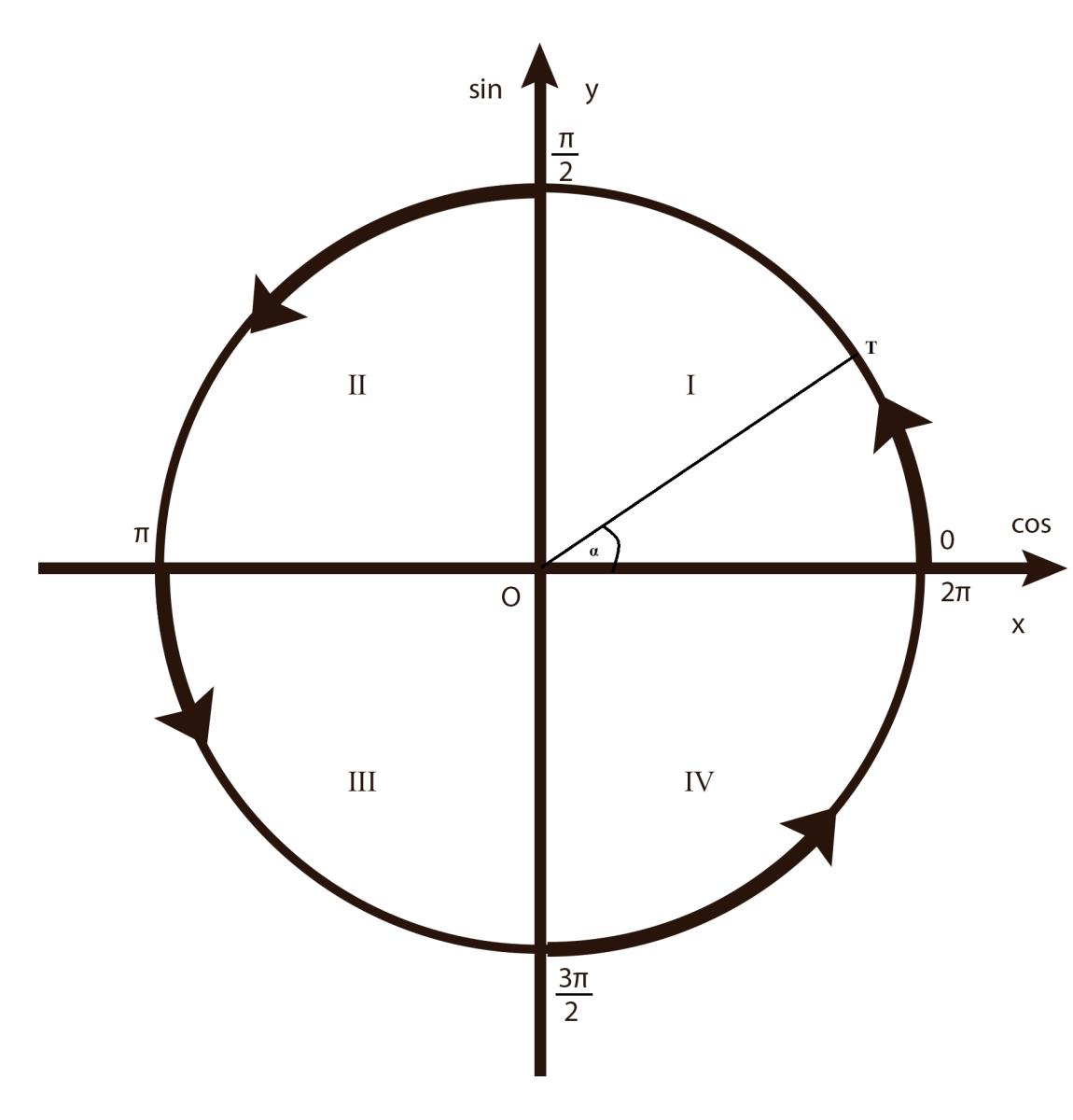 Cercul trigonometric | Trigonometrie | Liceunet.ro